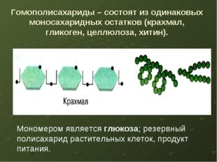 Гомополисахариды – состоят из одинаковых моносахаридных остатков (крахмал, гл