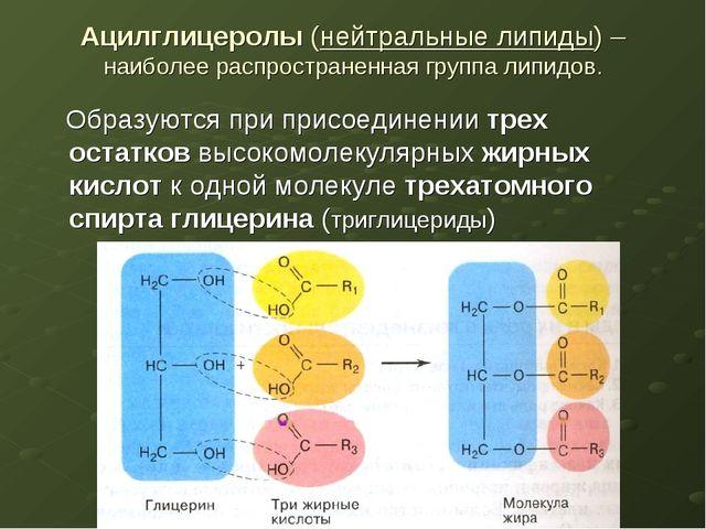 Ацилглицеролы (нейтральные липиды) – наиболее распространенная группа липидов...