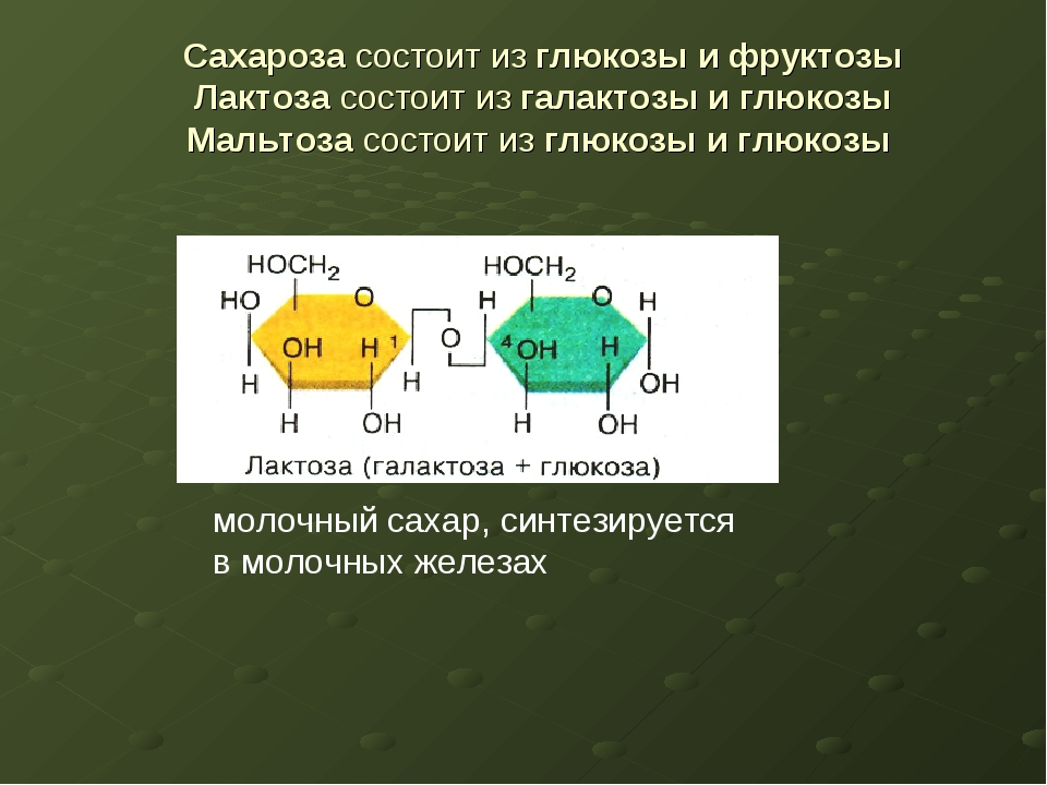 Сахароза состоит из глюкозы и фруктозы Лактоза состоит из галактозы и глюкозы...