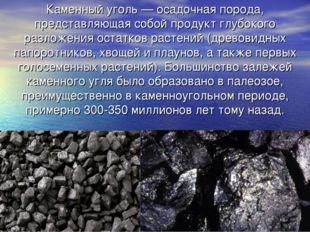 Каменный уголь — осадочная порода, представляющая собой продукт глубокого раз