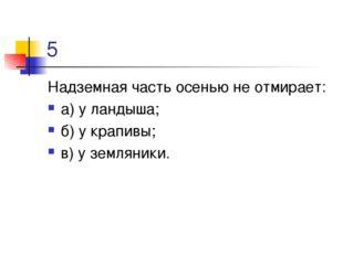 5 Надземная часть осенью не отмирает: а) у ландыша; б) у крапивы; в) у землян