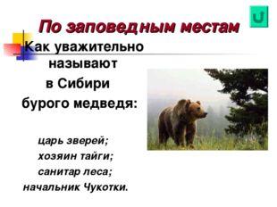 По заповедным местам Как уважительно называют в Сибири бурого медведя: царь з
