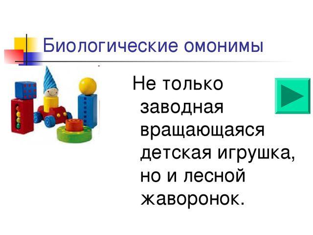 Биологические омонимы Не только заводная вращающаяся детская игрушка, но и ле...