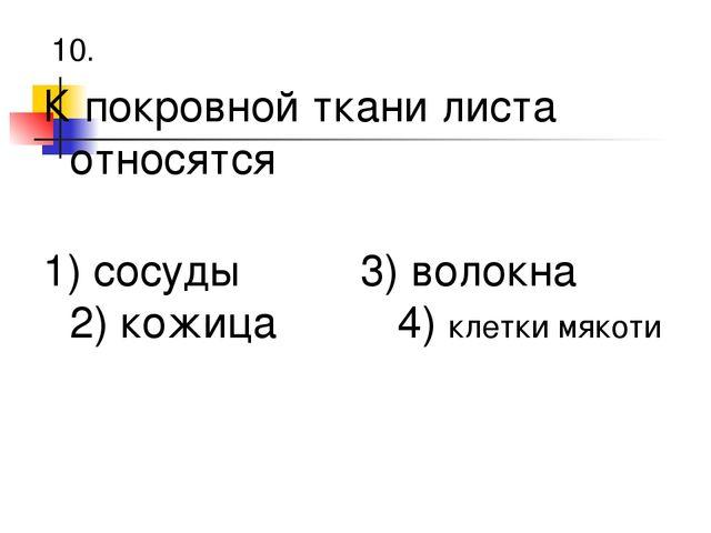 10. К покровной ткани листа относятся 1) сосуды 3) волокна 2) кожица 4) клет...