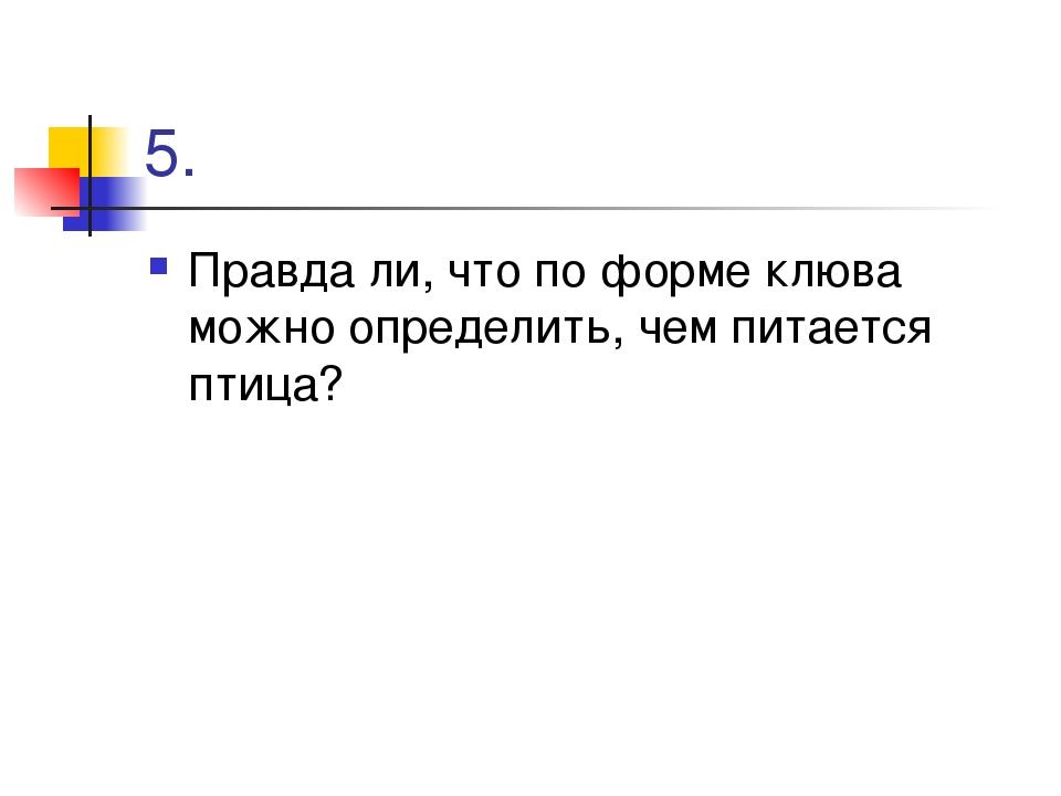 5. Правда ли, что по форме клюва можно определить, чем питается птица?