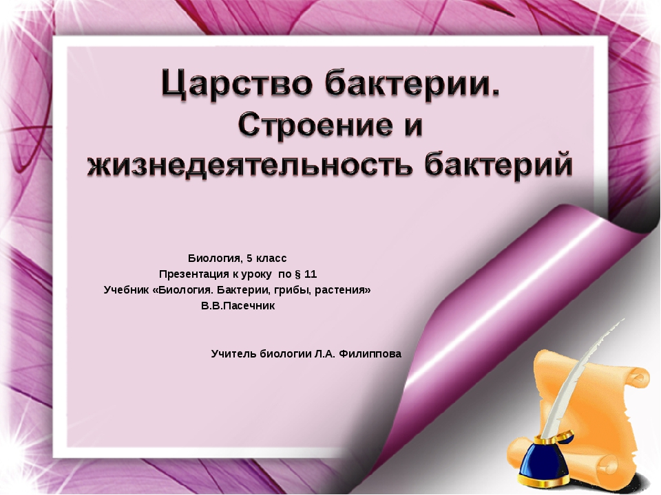 Биология, 5 класс Презентация к уроку по § 11 Учебник «Биология. Бактерии, гр...