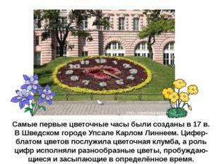 Самые первые цветочные часы были созданы в 17 в. В Шведском городе Упсале Кар