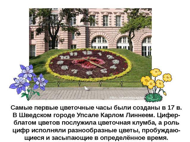 Самые первые цветочные часы были созданы в 17 в. В Шведском городе Упсале Кар...