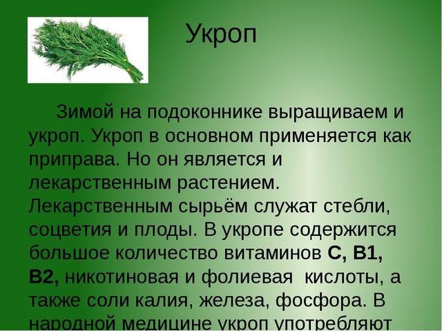 Укроп Зимой на подоконнике выращиваем и укроп. Укроп в основном применяется к...