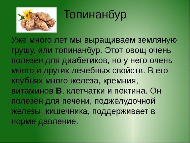 Топинанбур Уже много лет мы выращиваем земляную грушу, или топинанбур. Этот о...
