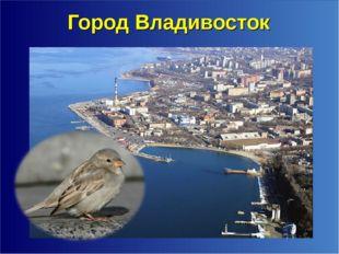 Город Владивосток