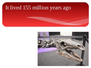 It lived 155 million years ago