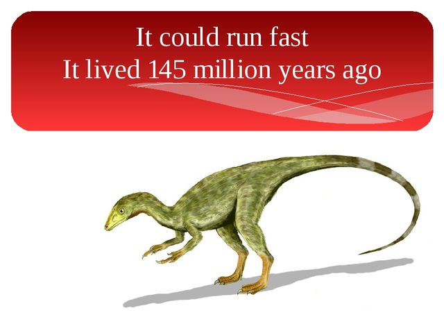 It could run fast It lived 145 million years ago