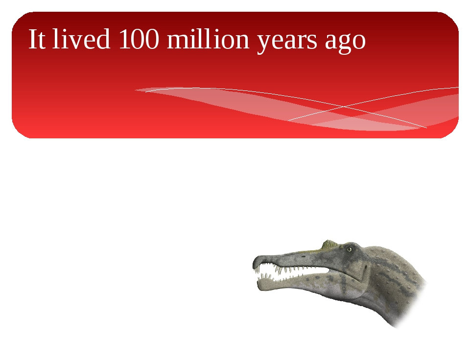 It lived 100 million years ago