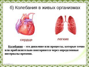 б) Колебания в живых организмах сердце легкие Колебания – это движение или пр