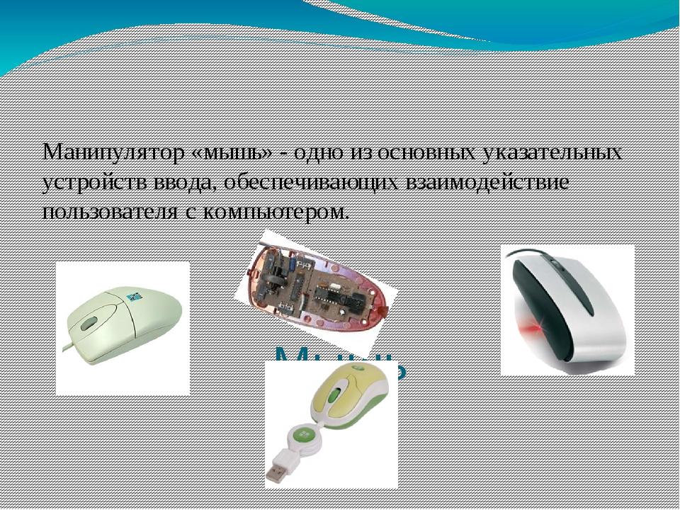 Мышь Манипулятор «мышь» - одно из основных указательных устройств ввода, обе...