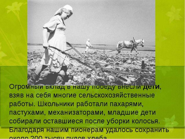 Огромный вклад в нашу победу внесли дети, взяв на себя многие сельскохозяйст...