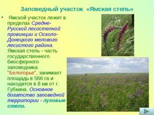 Ямской участок лежит в пределах Средне-Русской лесостепной провинции и Оскол