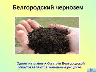 Белгородский чернозем Одним из главных богатств Белгородской области являются