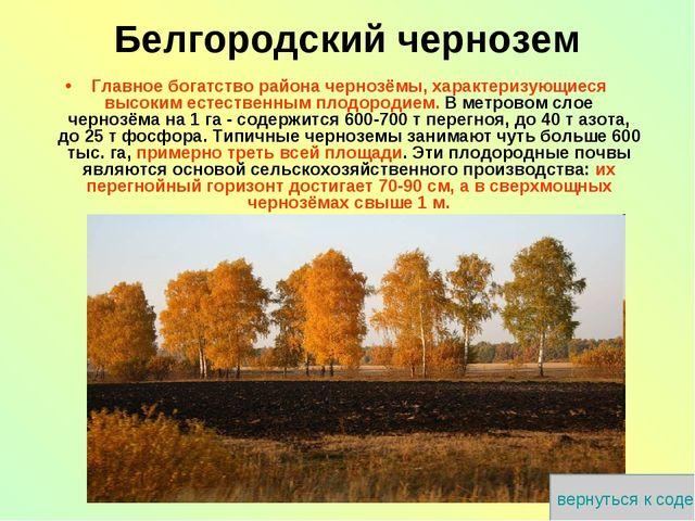 Главное богатство района чернозёмы, характеризующиеся высоким естественным пл...