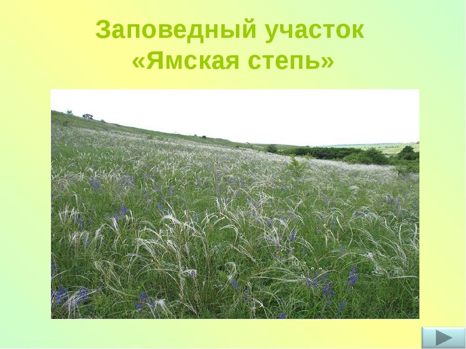 вот мой край родной белгород картинка организациях