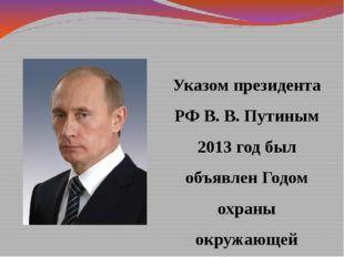 Указом президента РФ В. В. Путиным 2013 год был объявлен Годом охраны окружаю