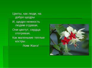 Цветы, как люди, на добро щедры И, щедро нежность людям отдавая, Они цветут,