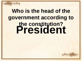 Who is the head of the government according to the constitution? President