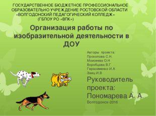 Организация работы по изобразительной деятельности в ДОУ Авторы проекта: Прок