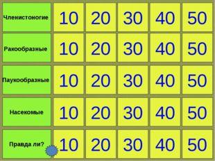 10 Правда ли? 20 30 40 50 Членистоногие Ракообразные Паукообразные Насекомые