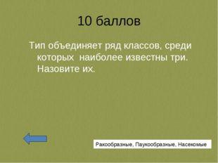 10 баллов Тип объединяет ряд классов, среди которых наиболее известны три. На
