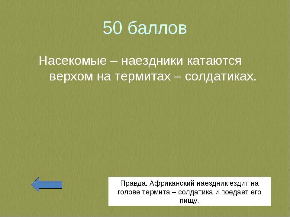50 баллов Насекомые – наездники катаются верхом на термитах – солдатиках. Пра...