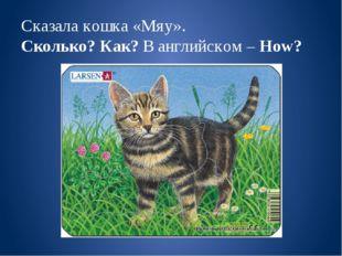 Сказала кошка «Мяу». Сколько? Как? В английском – How?