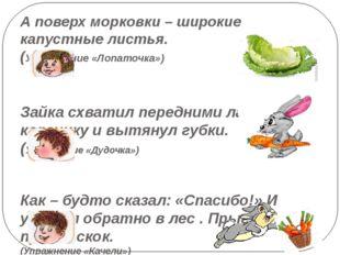 А поверх морковки – широкие капустные листья. (Упражнение «Лопаточка») Зайка