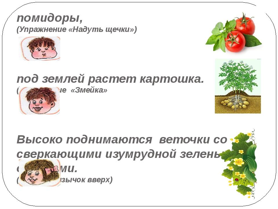 помидоры, (Упражнение «Надуть щечки») под землей растет картошка. (Упражнение...