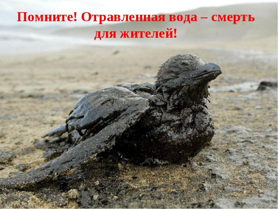 Помните! Отравленная вода – смерть для жителей!