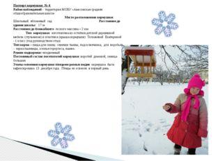 Паспорт кормушки № 4 Район наблюдений - территория МОБУ «Амосовская средняя о