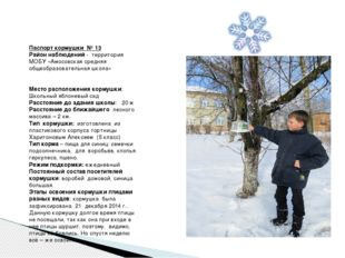 Паспорт кормушки № 13 Район наблюдений - территория МОБУ «Амосовская средняя
