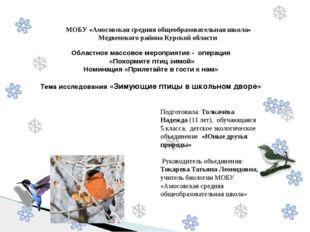 Областное массовое мероприятие - операция «Покормите птиц зимой» Номинация «