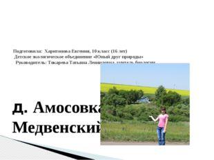 Подготовила: Харитонова Евгения, 10 класс (16 лет) Детское экологическое о