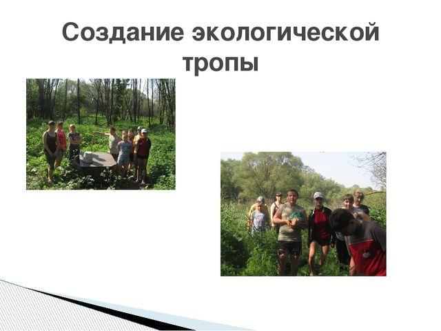 Создание экологической тропы