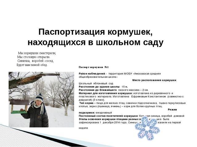 Паспортизация кормушек, находящихся в школьном саду Мы кормушки смастерили, М...