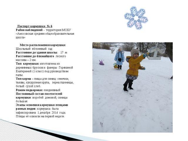 Паспорт кормушки № 6 Район наблюдений - территория МОБУ «Амосовская средняя...