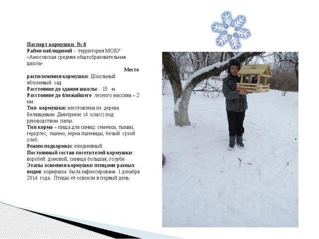 Паспорт кормушки № 8 Район наблюдений - территория МОБУ «Амосовская средняя о...