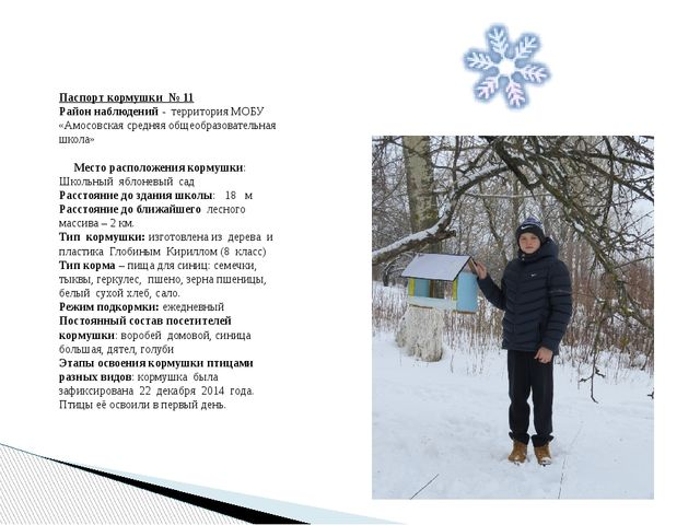 Паспорт кормушки № 11 Район наблюдений - территория МОБУ «Амосовская средняя...