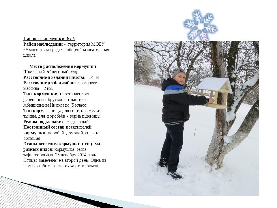 Паспорт кормушки № 5 Район наблюдений - территория МОБУ «Амосовская средняя о...