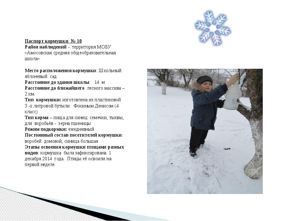 Паспорт кормушки № 10 Район наблюдений - территория МОБУ «Амосовская средняя...