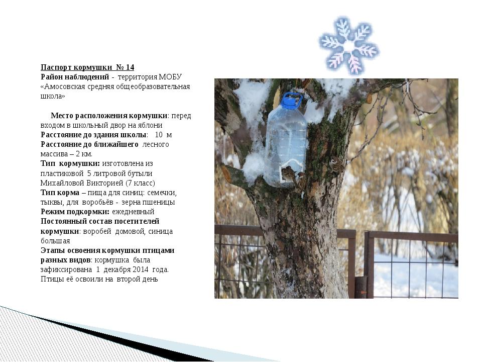 Паспорт кормушки № 14 Район наблюдений - территория МОБУ «Амосовская средняя...