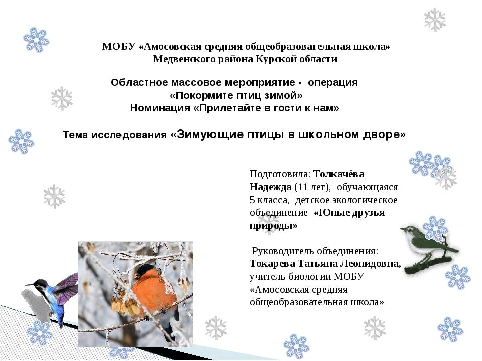 Областное массовое мероприятие - операция «Покормите птиц зимой» Номинация «...