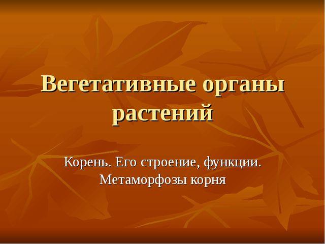 Вегетативные органы растений Корень. Его строение, функции. Метаморфозы корня